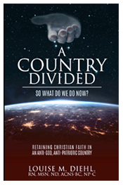 A Country Divided - by Louise Diehl
